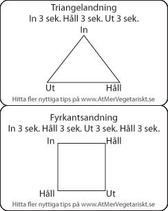 Andas i triangel andningsteknik