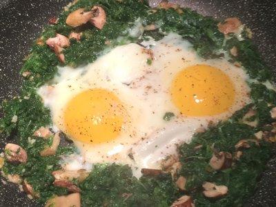 Spenat svamp ägg